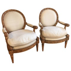 Pair of French Neoclassical Style Medallion Back Bergère Chairs
