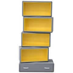 Sky Bookcase in Dark Gray Wood with Yellow Interior