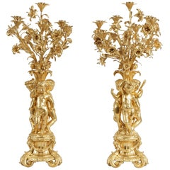 19th Century Pair of Gilt Bronze Candelabra in the Louis XV Style
