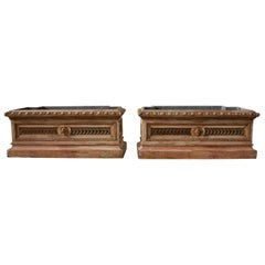 Pair of 19th Century Italian Planters in the Directoire Style