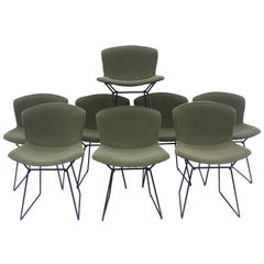 Set of 6 or 8 Harry Bertoia for Knoll Wire Chairs, 1960s-1970s