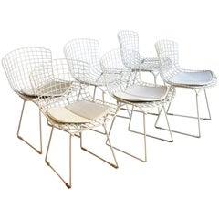 Set of 6 Bertoia Side Chairs for Knoll Vintage