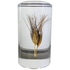 Acrylic Wheat Ear Cylindrical Sculpture in Modern Style, Italy