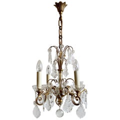 French, Brass, Louis XIV Style Chandelier with Flat Leaf Drops