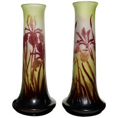 Pair of Emile Galle Art Nouveau Cameo Iris Vases