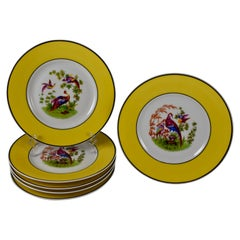 Rudolphstadt Beyer & Bock, Prussia Porcelain Chinoiserie Style Bird Plates, S/6