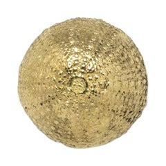 Pullcast Urchin 1 Drawer Handle in Polished Brass