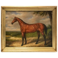 English Portrait of a Standing Horse