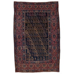 Antique Shirvan Rug, circa 1900s