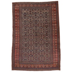 Antique Khorassan Rug, circa 1900s