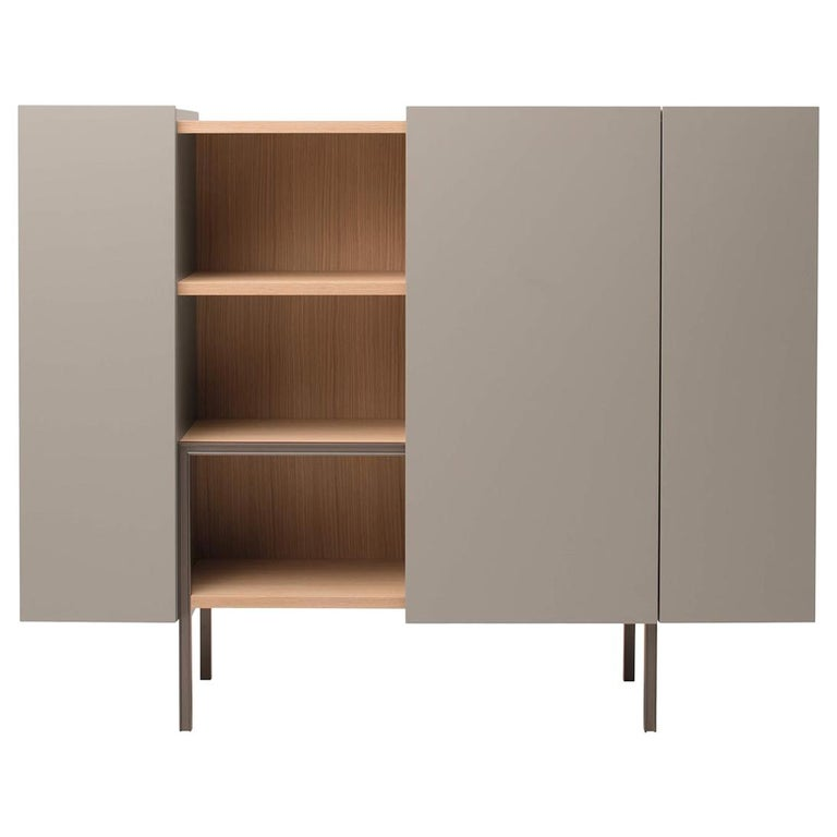 Ladin Cupboard in Wood Veneer with Lacquer Finish by Busnelli For Sale