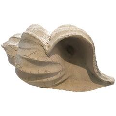 Plaster Shell
