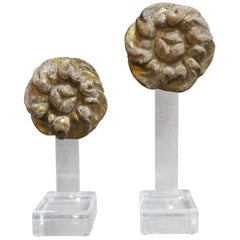 Goldholzschnitzereien aus dem 19. Jahrhundert auf Plexiglas Sockeln