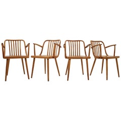 1960 Bentwood Armchairs by Antonin Suman for Ton, Set of Four