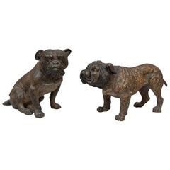 Pair of Cold Painted Vienna Bronze Bulldogs