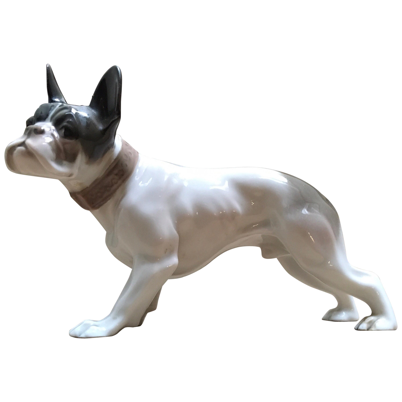 1920s French Bulldog Figurine by Rosenthal Selb Bavaria Germany, Art Deco