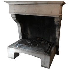 French Antique Limestone Fireplace Louis XIII Style 1800s from France