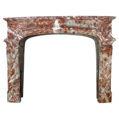 19th Century Louis XIV Style Fireplace in Belgian Rouge Royal Marble