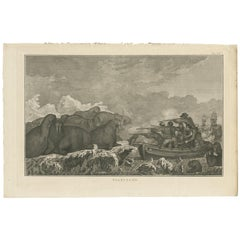 Antique Print of Walruses by Cook, 1803