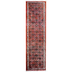 Wonderful Mid-20th Century Dargazin Rug