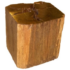 Andrianna Shamaris Iron Wood Side Table