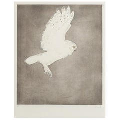 Little Owl, circa 1977, Etching with Aquatint in Colors by Dame Elizabeth Frink