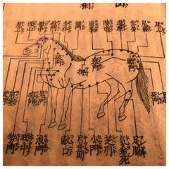 "Japan ""Samurai Horses"" Frameable Horse Woodblock Prints Book, 150 Yrs Old"