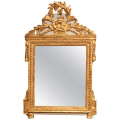 18th Century French Louis XVI Carved Giltwood Mirror from Provence