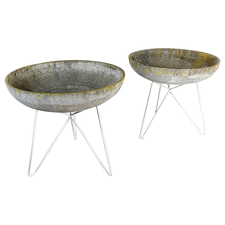 Midcentury Sonett Saucer Garden Planters with Hairpin Legs Stand, 1950s, Austria For Sale