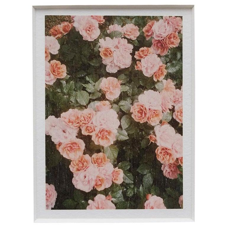 David Urbano The Rose Garden nº 21 For Sale