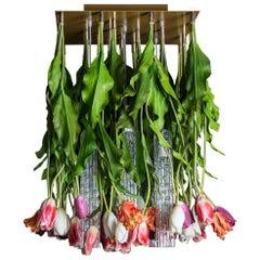 Flower Power Tulip Chandelier, cm h 80 65x65, Italy
