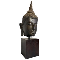 Thai Ayutthaya Bronze Buddha Head, U-Thong C Style, 14th-15th Century