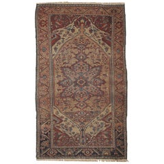 Handmade Antique Sarouk Farahan Style Rug, 1880s, 1B163