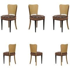 6 Art Deco Goatskin and Brass Italian Chairs, 1940