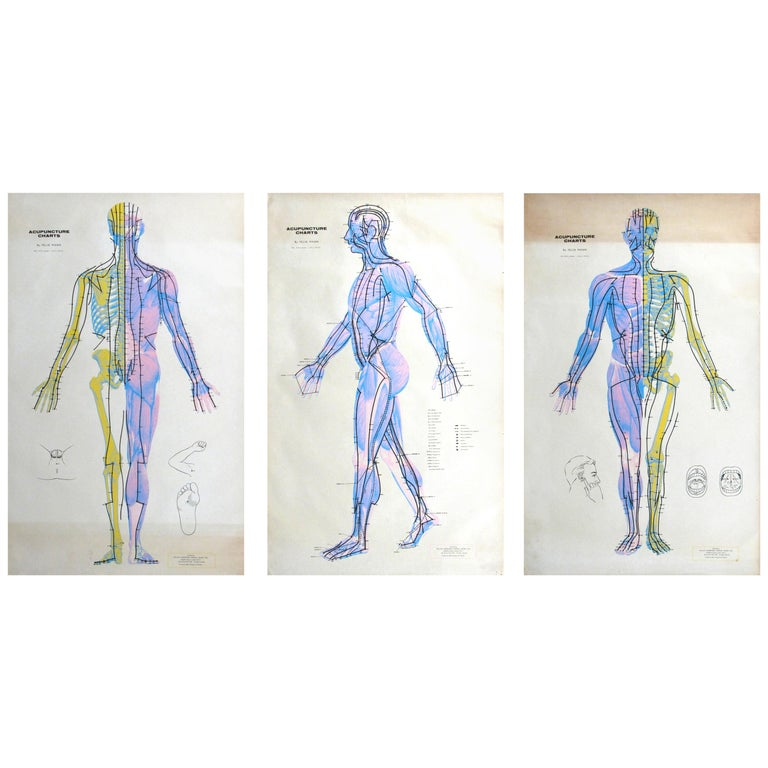 Set of Three Vintage Acupuncture Serigraphs on Linen by Felix Mann For Sale