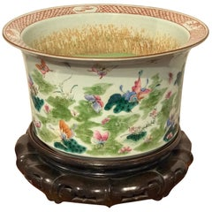 Large Chinese Export Famille Verte Jardiniere and Stand, Butterfly Motif
