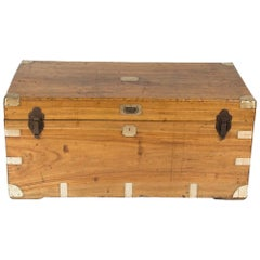 Large Hong Kong Camphor Wood Trunk