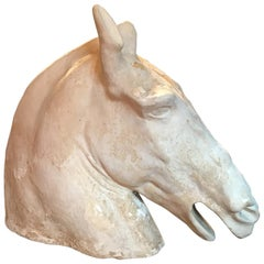 Antique Plaster Cast of the Parthenon Selene Horse Head
