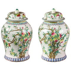 Pair of chinese potiches in glazed painted porcelain, China 20th century vases