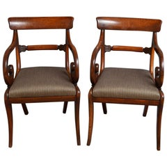 Pair of Regency Carver Chairs in Mahogany