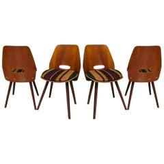 4 Vittorio Nobili Italian Midcentury Chairs, 1955