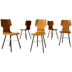 Set of Five Midcentury Plywood and Iron Dining Chairs Made in Italy, 1954