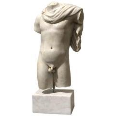 20th Century Italian Marble Sculpture Torso Apollo Belvedere Vatican Museum