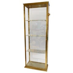 Early 20th Century, French Brass Display Cabinet