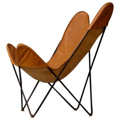 Butterfly Chair by Knoll, 1960s