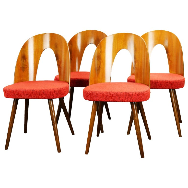 Mid Century Dining Chairs by Antonín Šuman for Tatra Nabytok Np, 1960s