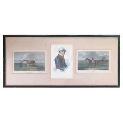 19th Century Set of Three Hand-Coloured Engravings on a Paper, England