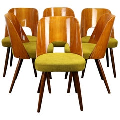 Set of Six Mid Century Dining Chairs by Oswald Haerdtl for Ton, 1950s