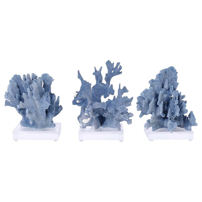 Three Blue Coral Specimens on Lucite For Sale