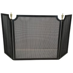 Neoclassical Steel, Brass and Grilling Fireplace Screen, French, circa 1940